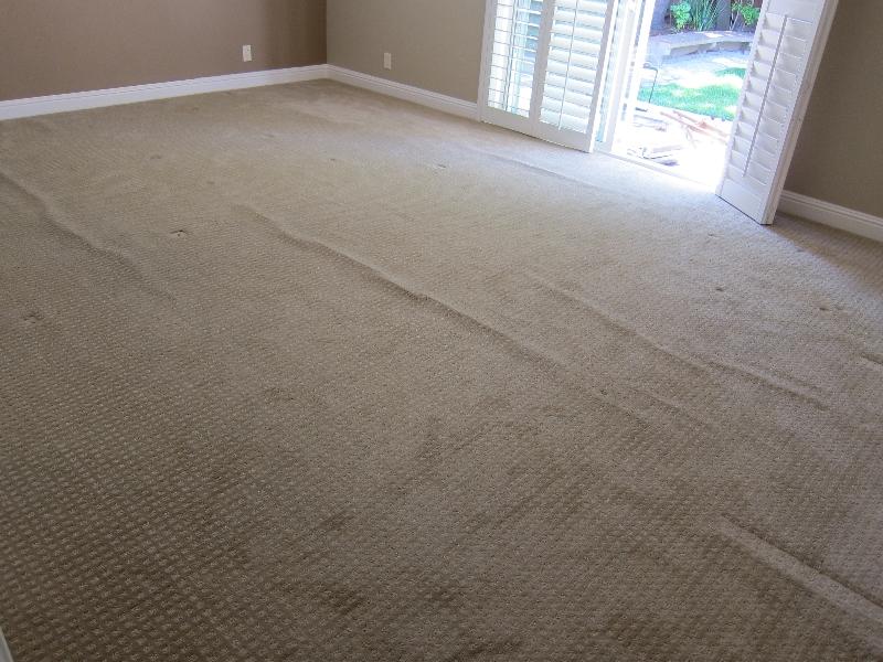 Loose carpet - LR