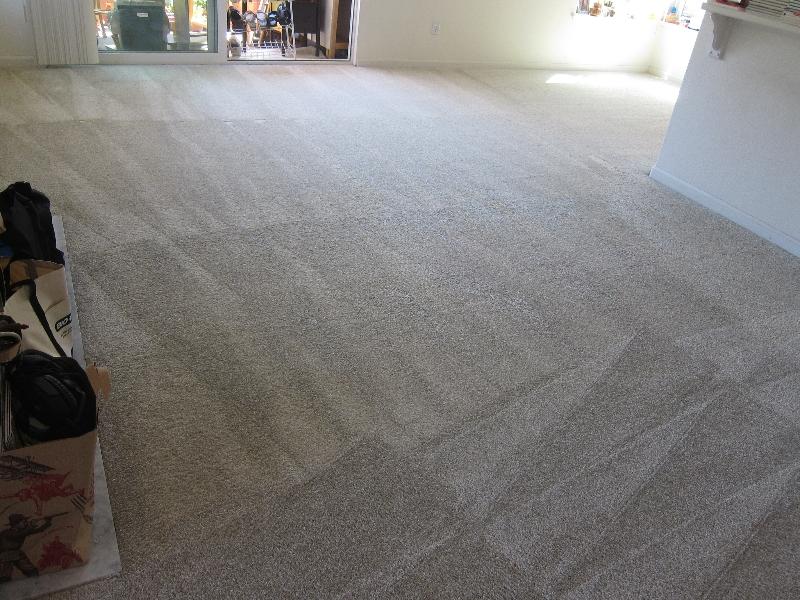 loose-carpet-after