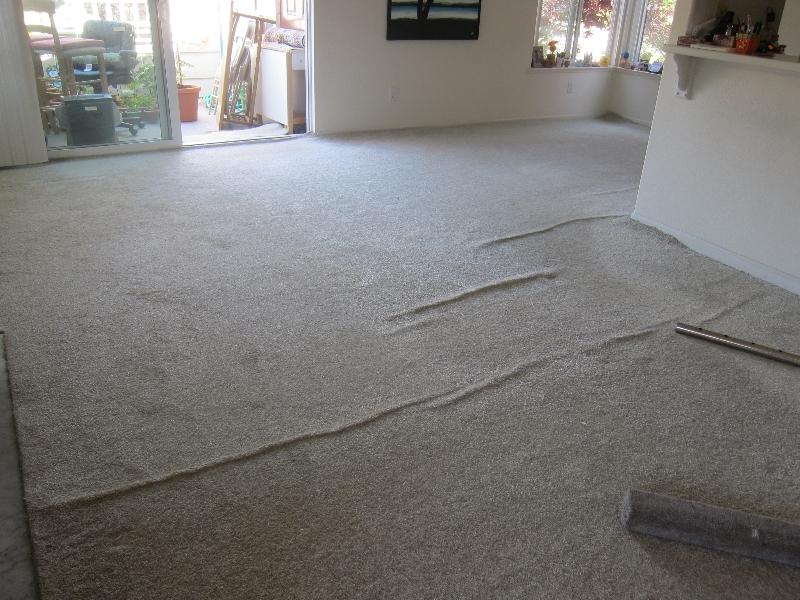 loose-carpet