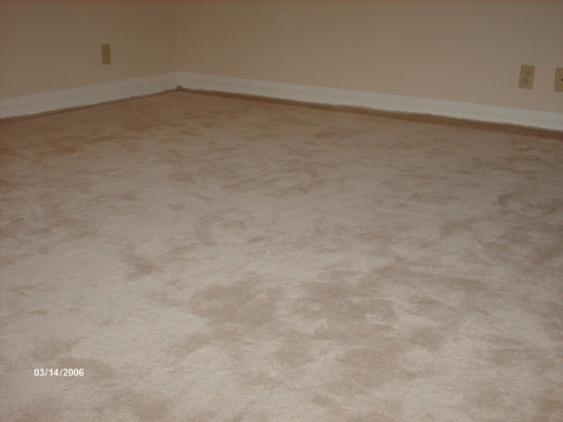 lose-carpet-stretched