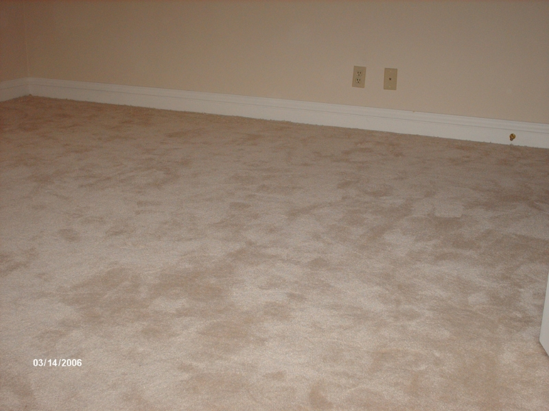 lose-carpet-stretched1