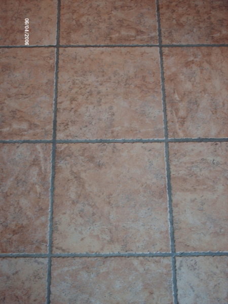 Tile and grout cleaning - before
