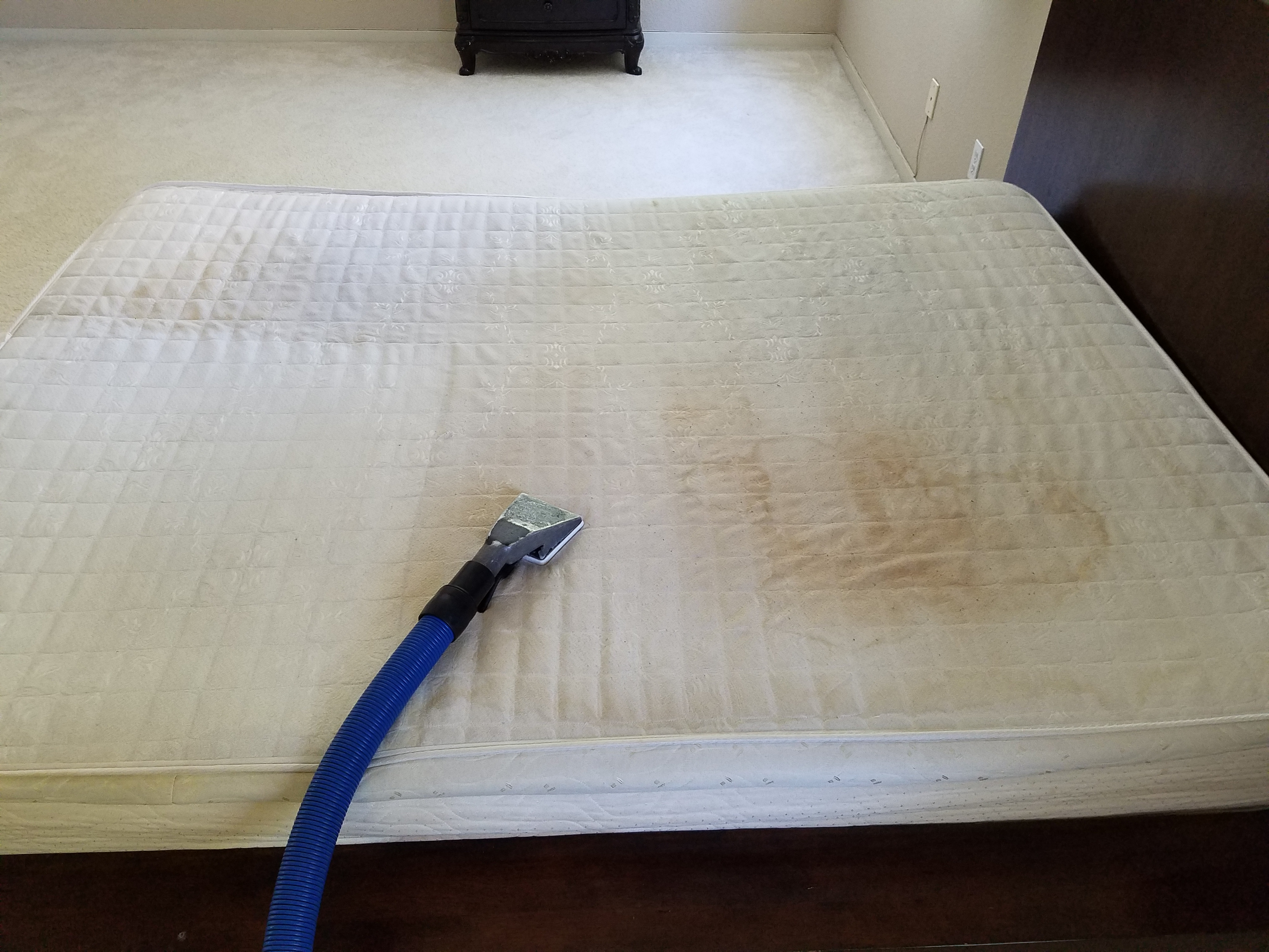Mattress Cleaning - Before