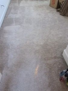 Re dyeing carpet due to color loss from bleach