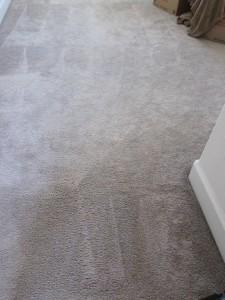 Bleach carpet spot repair - after